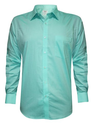Turtle Pure Cotton Sea Green Shirt at cilory