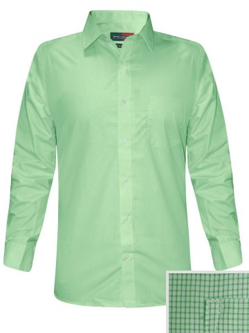 https://static2.cilory.com/200247-thickbox_default/peter-england-light-green-formal-checks-shirt.jpg