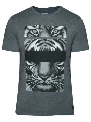 https://static4.cilory.com/207351-thickbox_default/peter-england-dark-grey-round-neck-t-shirt.jpg