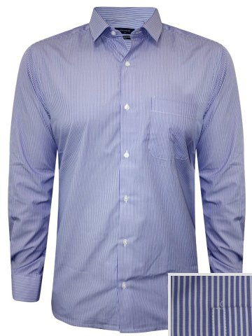 Peter England Blue Formal Stripes Shirt at cilory