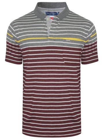 https://static7.cilory.com/309269-thickbox_default/proline-grey-melange-maroon-pocket-polo-t-shirt.jpg