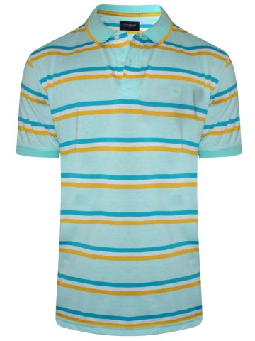 https://static9.cilory.com/315032-thickbox_default/peter-england-light-green-stripes-polo-t-shirt.jpg