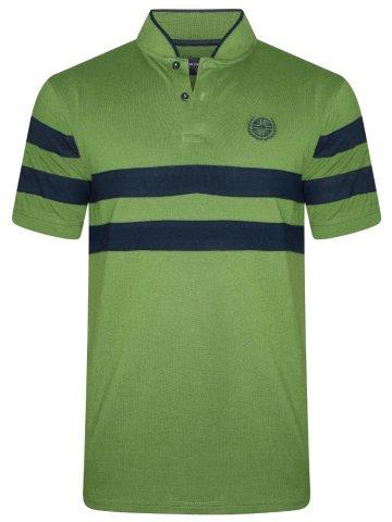 https://static7.cilory.com/363197-thickbox_default/peter-england-green-stripes-polo-t-shirt.jpg