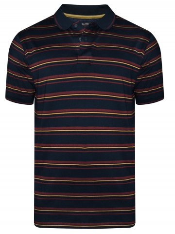 https://d38jde2cfwaolo.cloudfront.net/381239-thickbox_default/peter-england-navy-maroon-stripes-tipping-polo-t-shirt.jpg