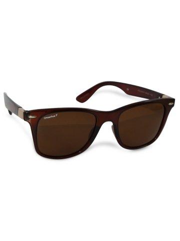 https://static3.cilory.com/385605-thickbox_default/o-positive-brown-wayfarer-sunglasses.jpg