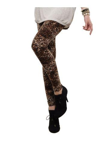 Femmora Leopard Ankel Length Legging at cilory